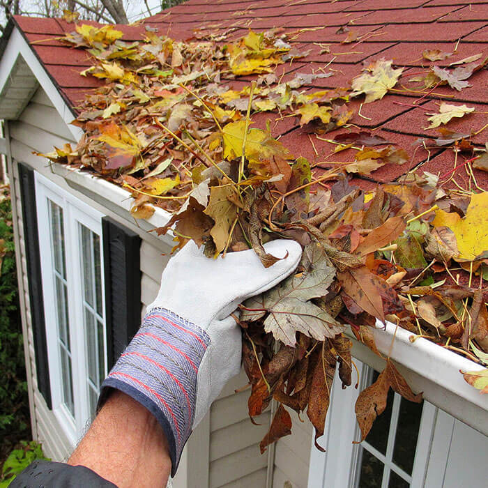 Gutter cleaning calgary